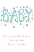 Birth Announcement Digital Palette 2