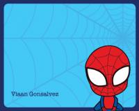 Web Boy