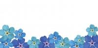 Letter Sheet Envelopes - Watercolor Blue Flower