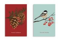 Soft Cover - Winter Bird & Pine