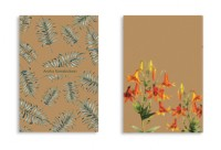 Soft Cover - Wildflowers & Palms