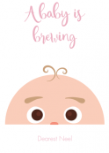 Birth Announcement Palette 1